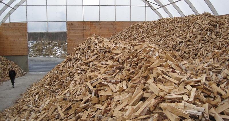 Firewood terminals full of birch firewood